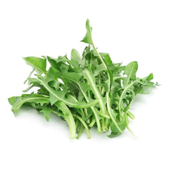 Mniszek lekarski posiada bardzo wiele cennych składników odżywczych i świetnie oczyszcza organizm.